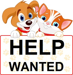 Hiring Nashville Dog Walkers & Pet Sitters